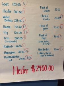 Heifer vote